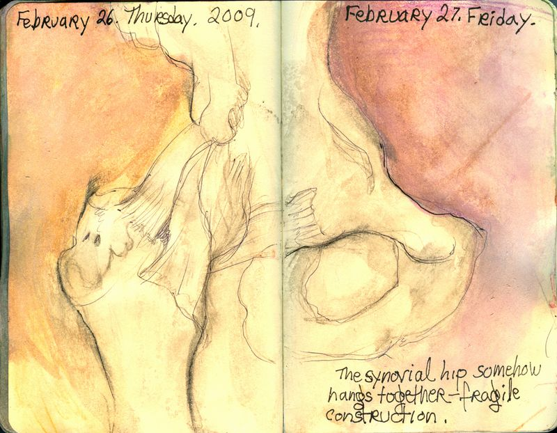 February_26_27_2009_flipthehip