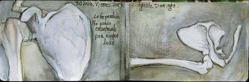 July30_august1_2010_los_hombros_encogidos