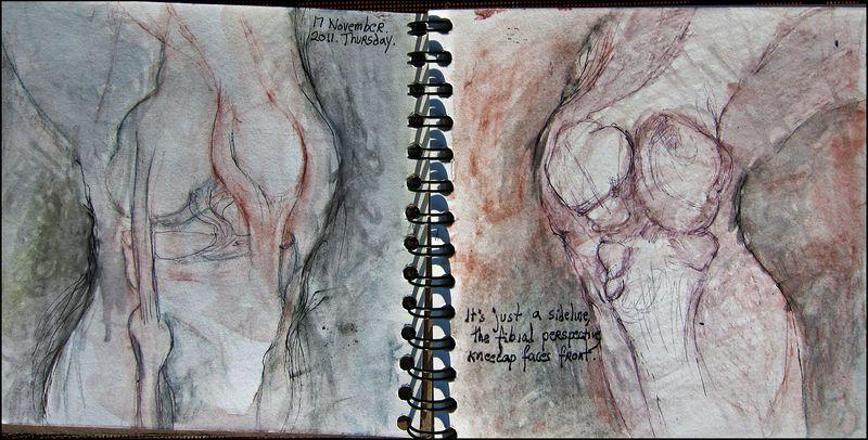 November17_2011_thigh sideed off my stride