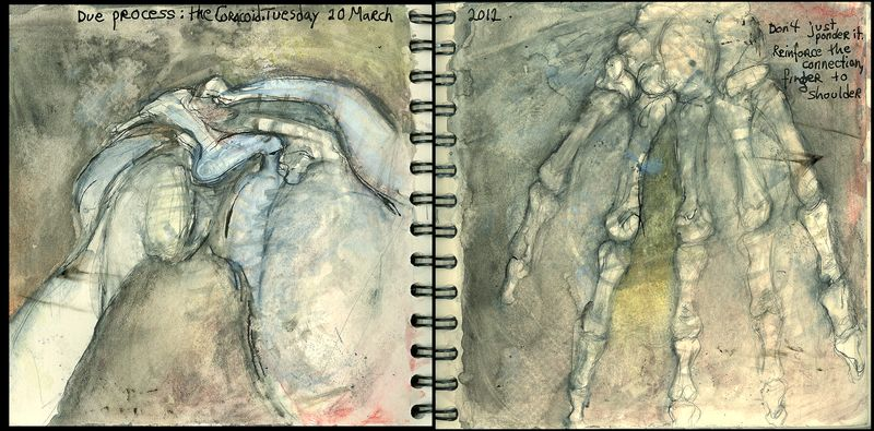March20_2012_shoulder on_due process_coracoid