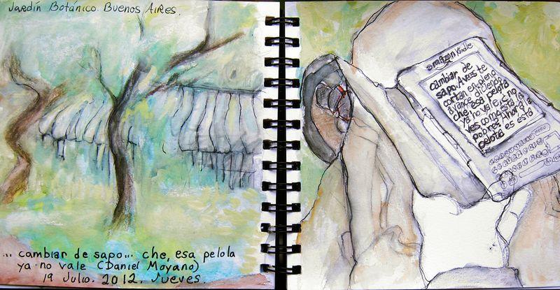 July19_2012_cambiar de sapo_2