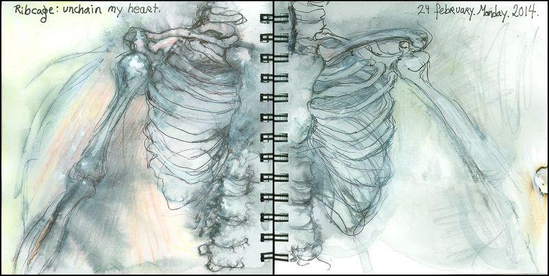 February24_2014_ribcage_unchain my heart