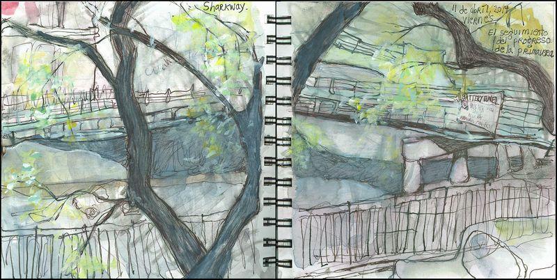 April11_2014_sharkway_el seguimiento del progreso de la primavera