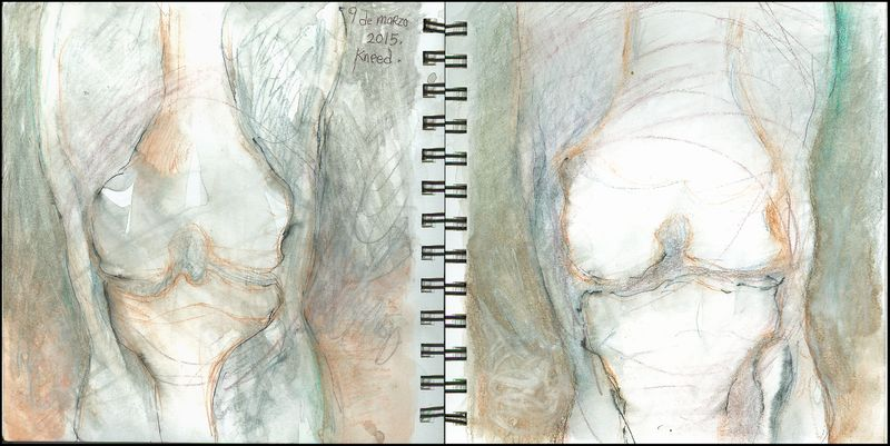 March9_2015_kneed