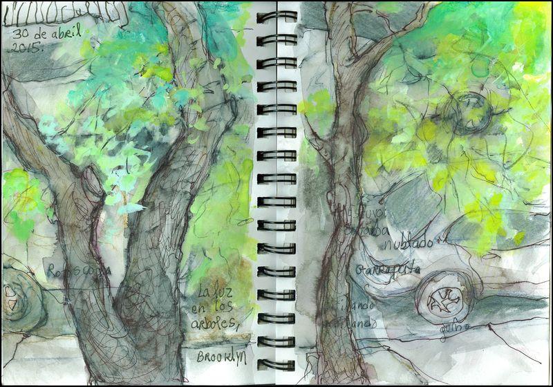 April30_2015_la luz en los árboles